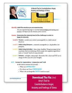 Download The Fix: Amy Dee's tool to counterbalance Anger, Anxiety and Feelings of Stress