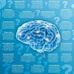 Brain funny motivational speaker